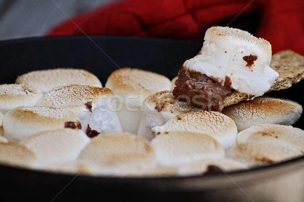 Malvavisco salsa hierro fundido pan extrema Foto stock © StephanieFrey