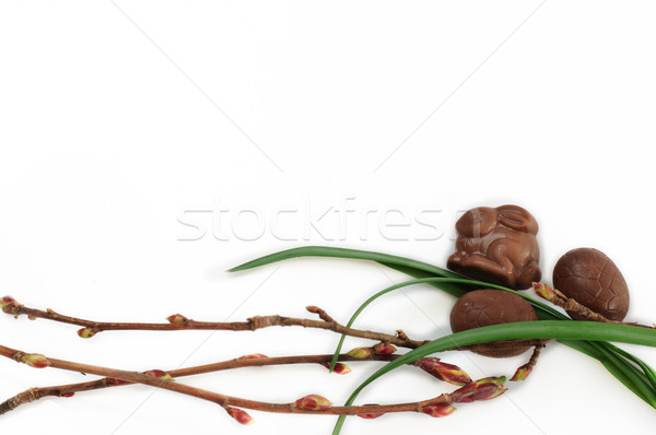 Stok fotoğraf: çikolata · paskalya · yumurtası · tavşan · yalıtılmış · beyaz · çiçek