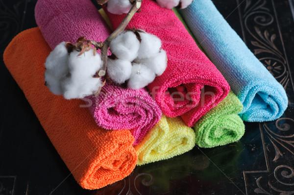 Zdjęcia stock: Bawełny · roślin · tkaniny · tekstury · zielone