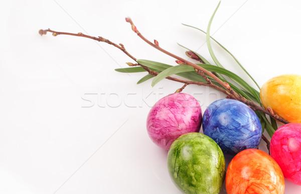 Kolorowy Easter Eggs odizolowany biały kwiat charakter Zdjęcia stock © stickasa