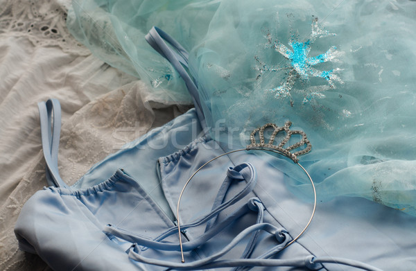 Zdjęcia stock: Niebieski · karnawałowe · princess · sukienka · tablicy · cookie