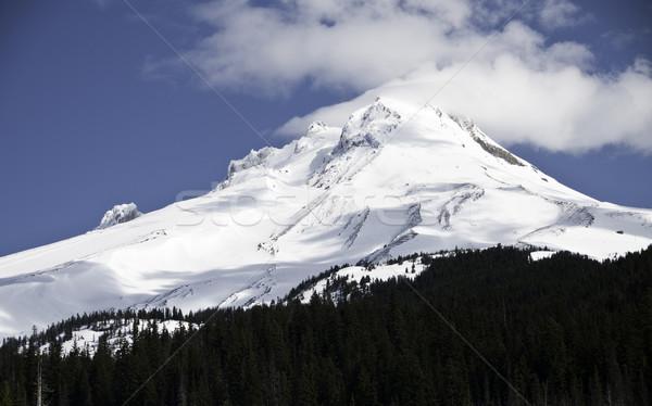 Görmek durdurmak karayolu 26 kar Stok fotoğraf © stockfrank
