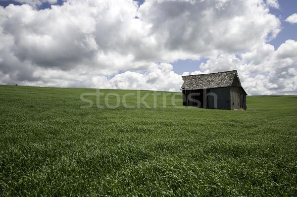 сарай области старые зеленая трава темно облака Сток-фото © stockfrank