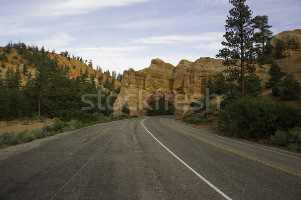 Roadway going through rock arch Stock photo © stockfrank