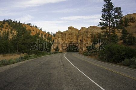 Wzgórza przydrożny czerwony rock autostrady trawy Zdjęcia stock © stockfrank