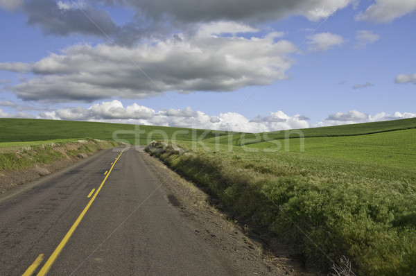 Road turning right Stock photo © stockfrank