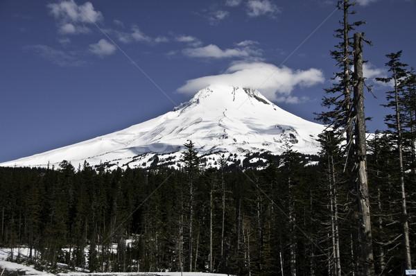 мнение форме стоянка горные снега Сток-фото © stockfrank