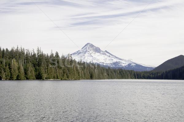 мнение потеряли озеро небе природы Сток-фото © stockfrank