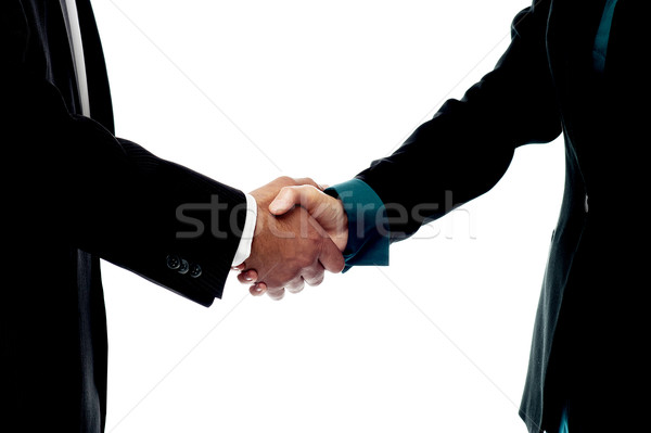 Business people handshake Stock photo © stockyimages