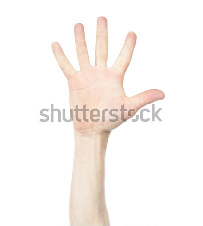 Stock fotó: Kéz · szám · öt · férfi · kézmozdulat · izolált