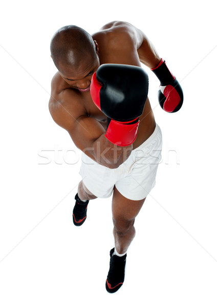 A black african athletic boxer with boxing gloves Stock photo © stockyimages
