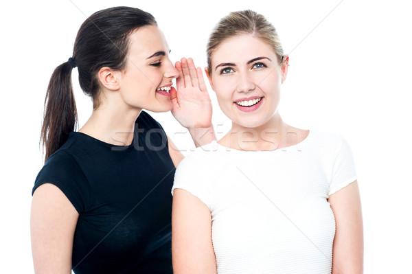 Segreto due bella sorridere ragazze condivisione Foto d'archivio © stockyimages