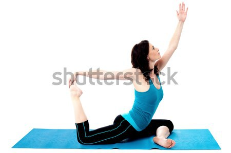 One legged royal pigeon pose Stock photo © stockyimages