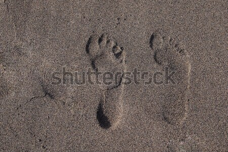 Footprints in sand, sunny day Stock photo © stockyimages