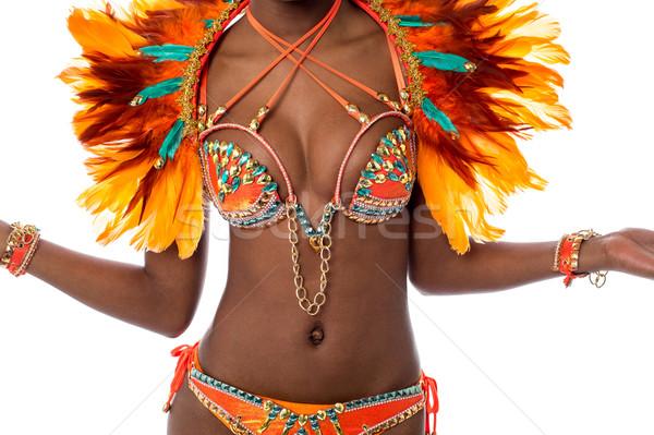 Tökéletes jelmez szamba tánc kép nő Stock fotó © stockyimages