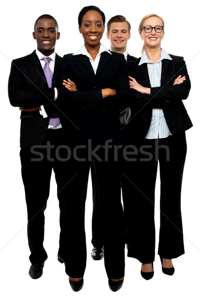 Team kann Business Frauen Porträt Stock foto © stockyimages