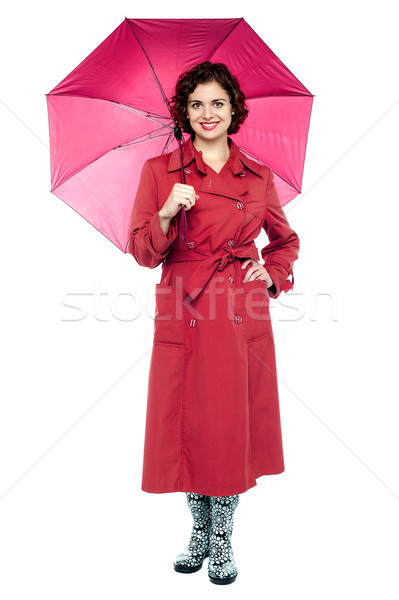 Mode maroon stylish Dame halten Stock foto © stockyimages