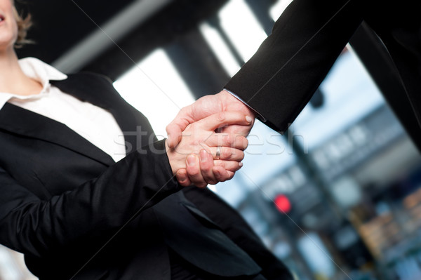 Photo stock: Affaires · handshake · face · réussi · gens · d'affaires · serrer · la · main