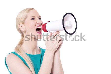 Gorgeous female with megaphone Stock photo © stockyimages