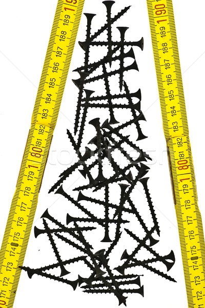 Group screws and ruler Stock photo © stokato