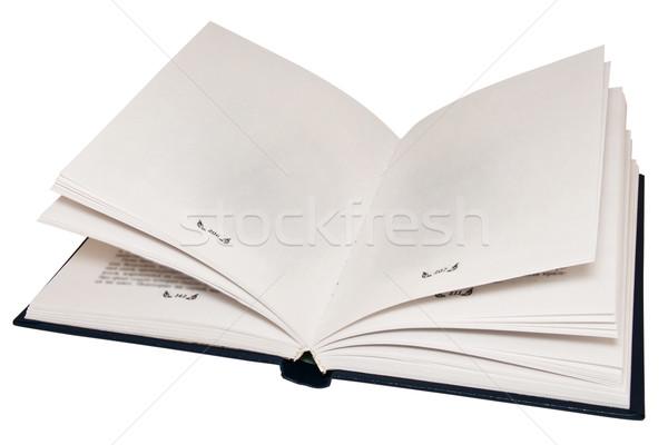 Açmak eski kitap boş sayfa kâğıt kitap Stok fotoğraf © stokato