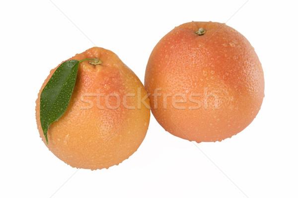 Two grapefruit  Stock photo © stokato