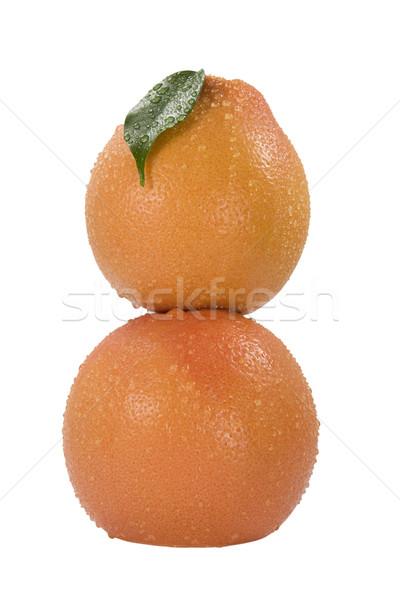 Two grapefruit with drops of dew Stock photo © stokato