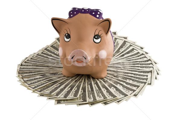 Moneybox - pig on dollars Stock photo © stokato
