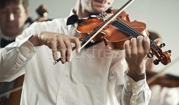 Violinist Stock photo © stokkete