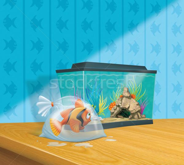Sevimli akvaryum balığı akvaryum çizgili plastik çanta Stok fotoğraf © stokkete