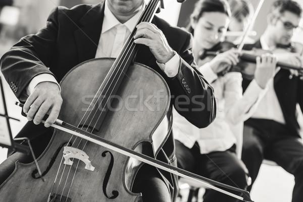 Profi cselló játékos előad egyéb zenészek Stock fotó © stokkete