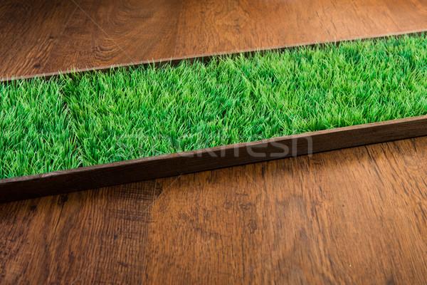 Mesterséges tőzeg keményfa padló műfű kertészkedés környezeti Stock fotó © stokkete