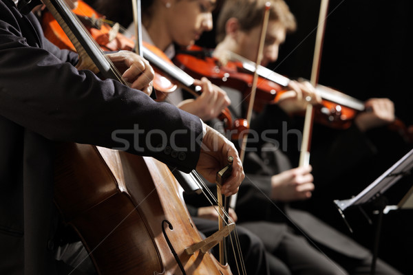 Classical music concert Stock photo © stokkete
