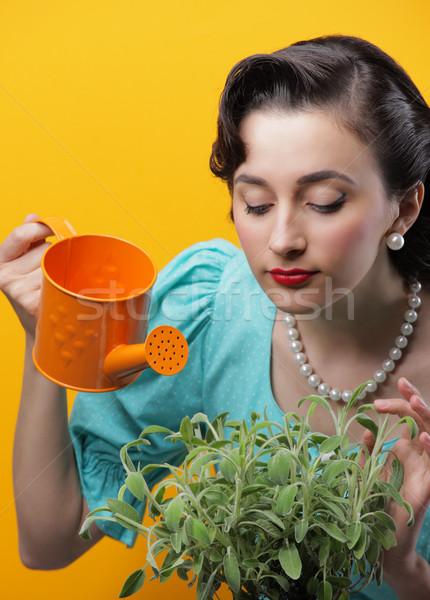 Zöld hüvelykujj csinos nő locsol növények retró stílus Stock fotó © stokkete