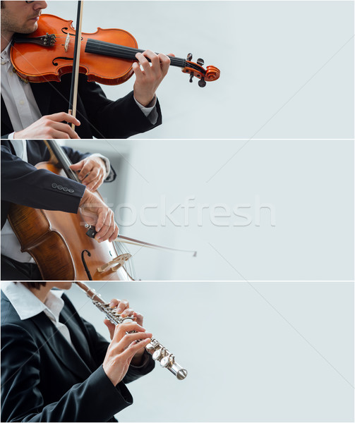 классическая музыка Баннеры профессиональных классический Музыканты играет Сток-фото © stokkete