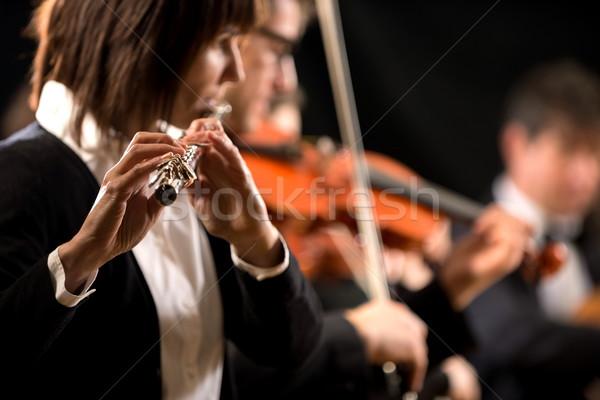 женщины профессиональных концерта симфония оркестра Сток-фото © stokkete
