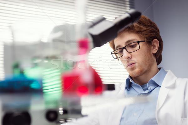 Forscher Arbeit jungen Labor Glasgeschirr Vordergrund Stock foto © stokkete