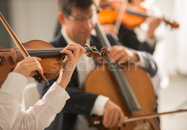 Violinist performing with orchestra Stock photo © stokkete