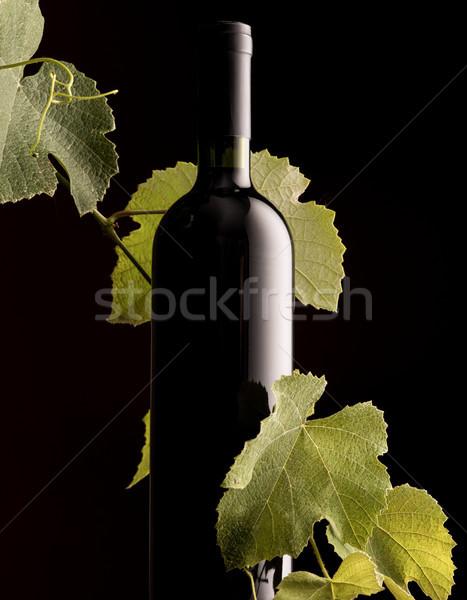 Rew wine bottle with vine branch Stock photo © stokkete