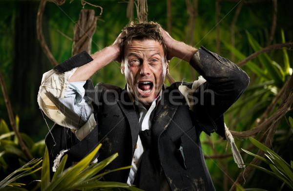 Stracił działalności dżungli zdesperowany biznesmen głowie Zdjęcia stock © stokkete