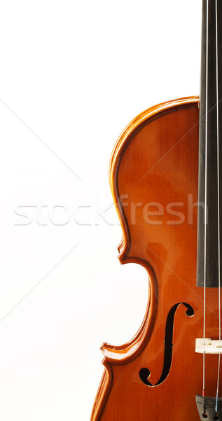 バイオリン フロント 表示 ショット 音楽 赤 ストックフォト © stokkete