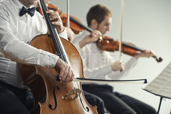Stock photo: Classical music concert
