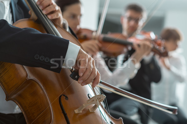 Symphony orchestra performance, string section Stock photo © stokkete