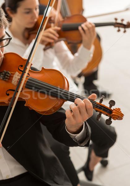 オーケストラ 文字列 セクション クラシック音楽 交響曲 ストックフォト © stokkete