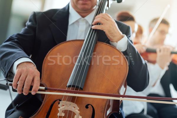 профессиональных виолончель игрок другой Музыканты Сток-фото © stokkete