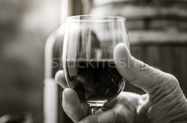 şarap tadımı bodrum kıdemli adam pahalı Stok fotoğraf © stokkete