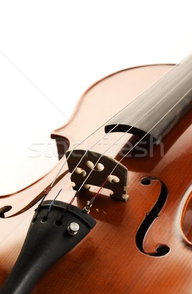 violin Stock photo © stokkete