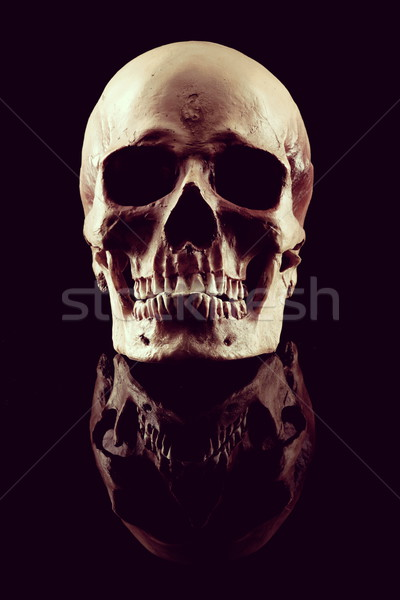 Stock photo: Natural human skull front view on black background.
