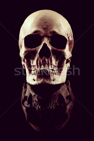 Photo stock: Naturelles · humaine · crâne · vue · noir