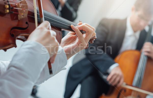 Classique orchestre chaîne musique classique Photo stock © stokkete